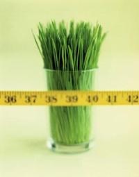 Уменьшить количество калорий
